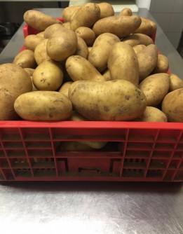 Découpe pommes de terre 1